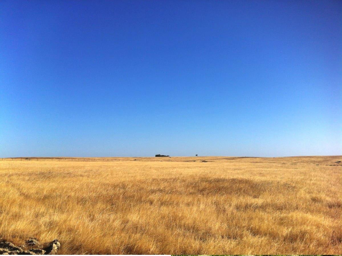 Planicie Dourada - Baixo Alentejo